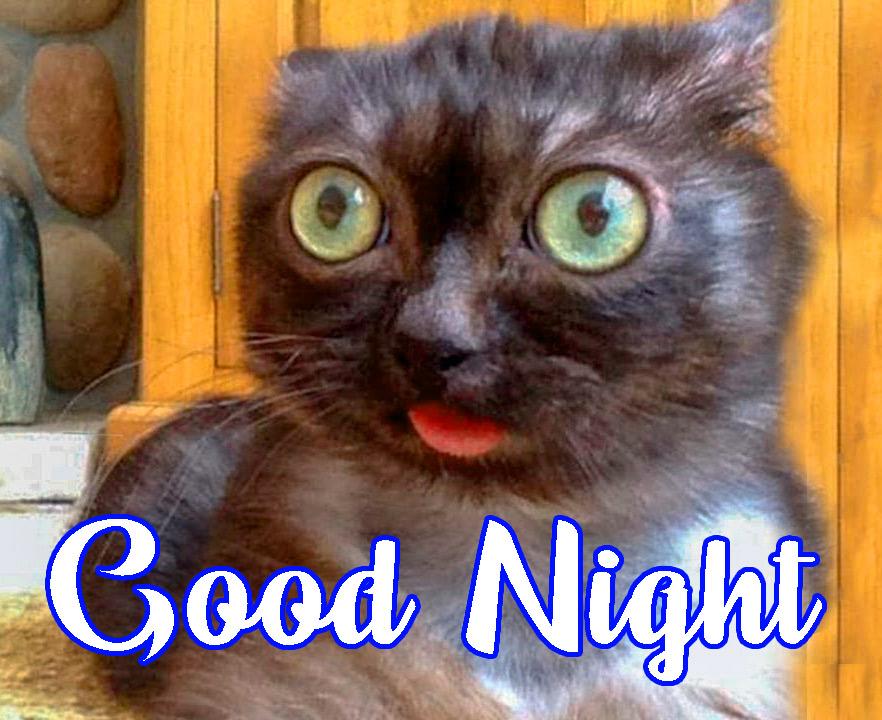 Witzige gute nacht